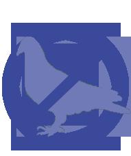 Controle de pombos na dedetizadora Bio Control