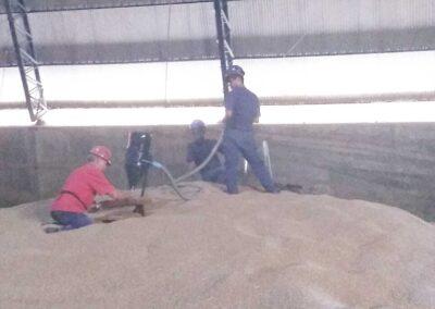 expurgo de silos
